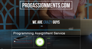 ProgAssignments.com Review