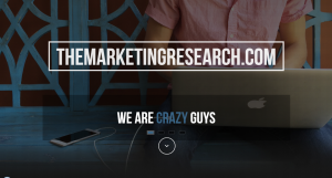 TheMarketingResearch.com Review